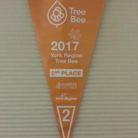 Tree Bee 3